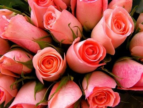 Алмазная Мозаика 30x40 Букет розовых роз (арт. GB70068)