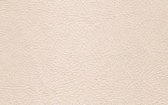 Искусственная кожа Valencia bone (Валенсия боне)