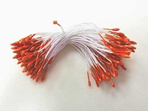 Тычинки 35 нитей, двусторонние-острые, мелкие. Цвет орнажевый.