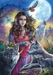 Картина раскраска по номерам 40x50 Повелительница волков со стаей