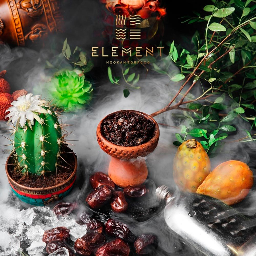 Табак для кальяна Element Вода 100 гр Cactus Fig