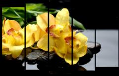 """Модульная картина """"Желтая орхидея"""""""