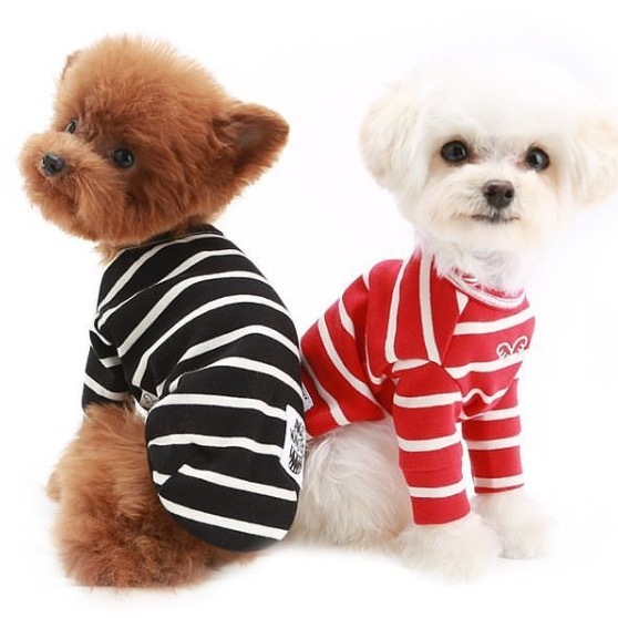 тельняшки для собак