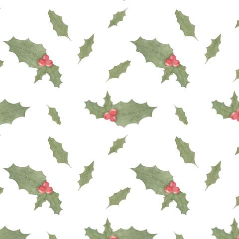 Остролист, рождественское растение