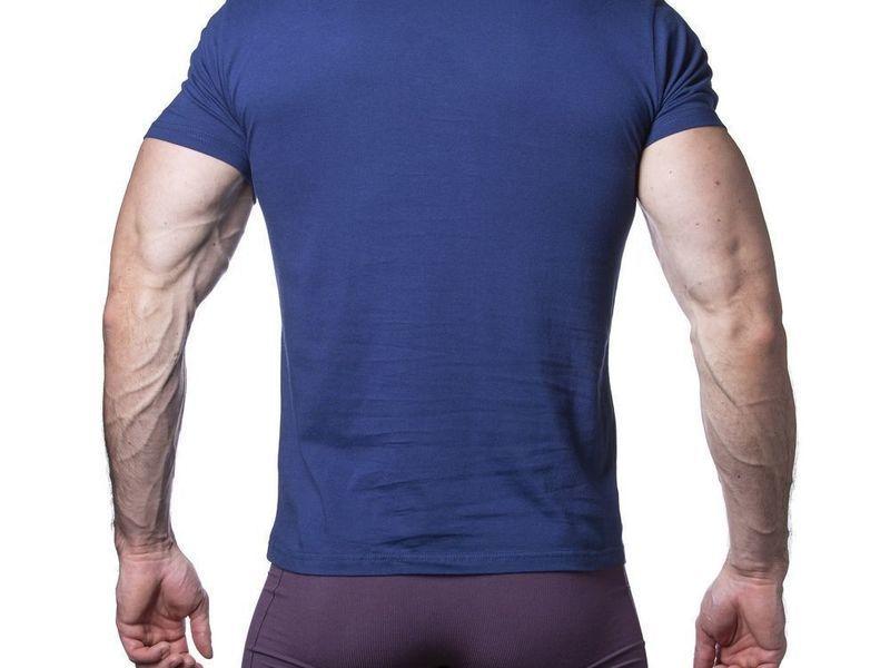 Мужская футболка синяя Sergio Dallini SDT761-4