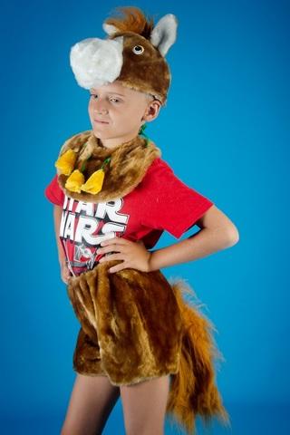 Карнавальный костюм Лошадки 1