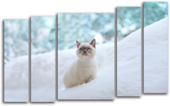 """Модульная картина """"Кот в снегу"""""""