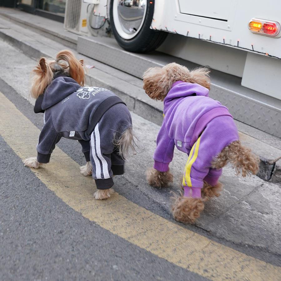 велюровые костюмы для собак