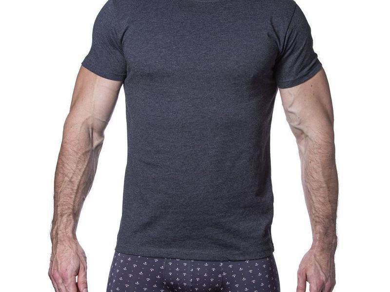 Мужская футболка темно-серая Sergio Dallini SDT760-3