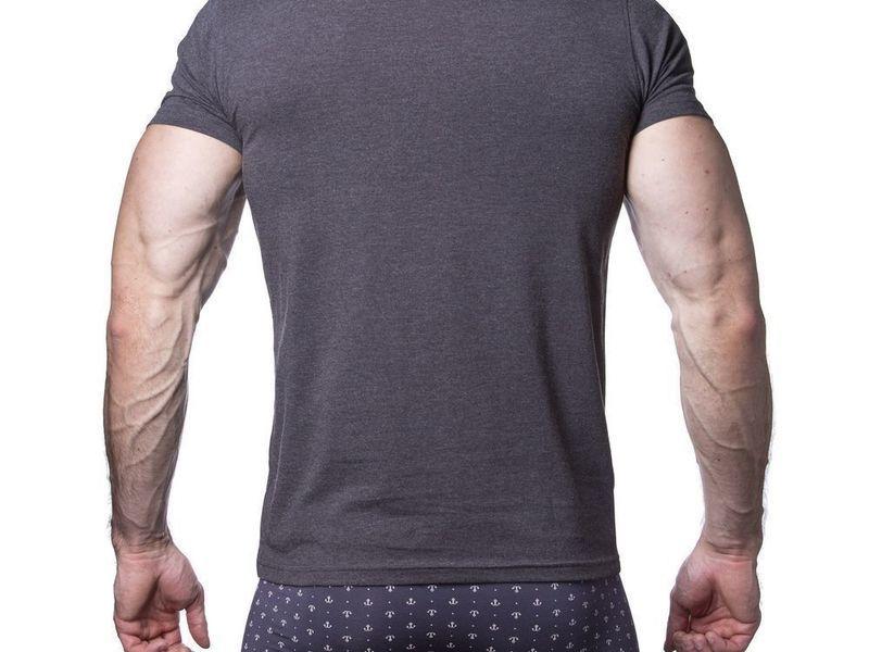 Мужская футболка темно-серая Sergio Dallini SDT751-3