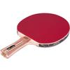 Ракетка для настольного тенниса ATEMI PRO 5000 CV