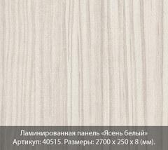 Ламинированная панель Вивальди №515 Ясень белый