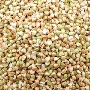 Зеленая гречка семена