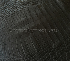 Кожа крокодила SK-20