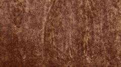 Велюр Fortune velour mustang (Фортун велюр мустанг)