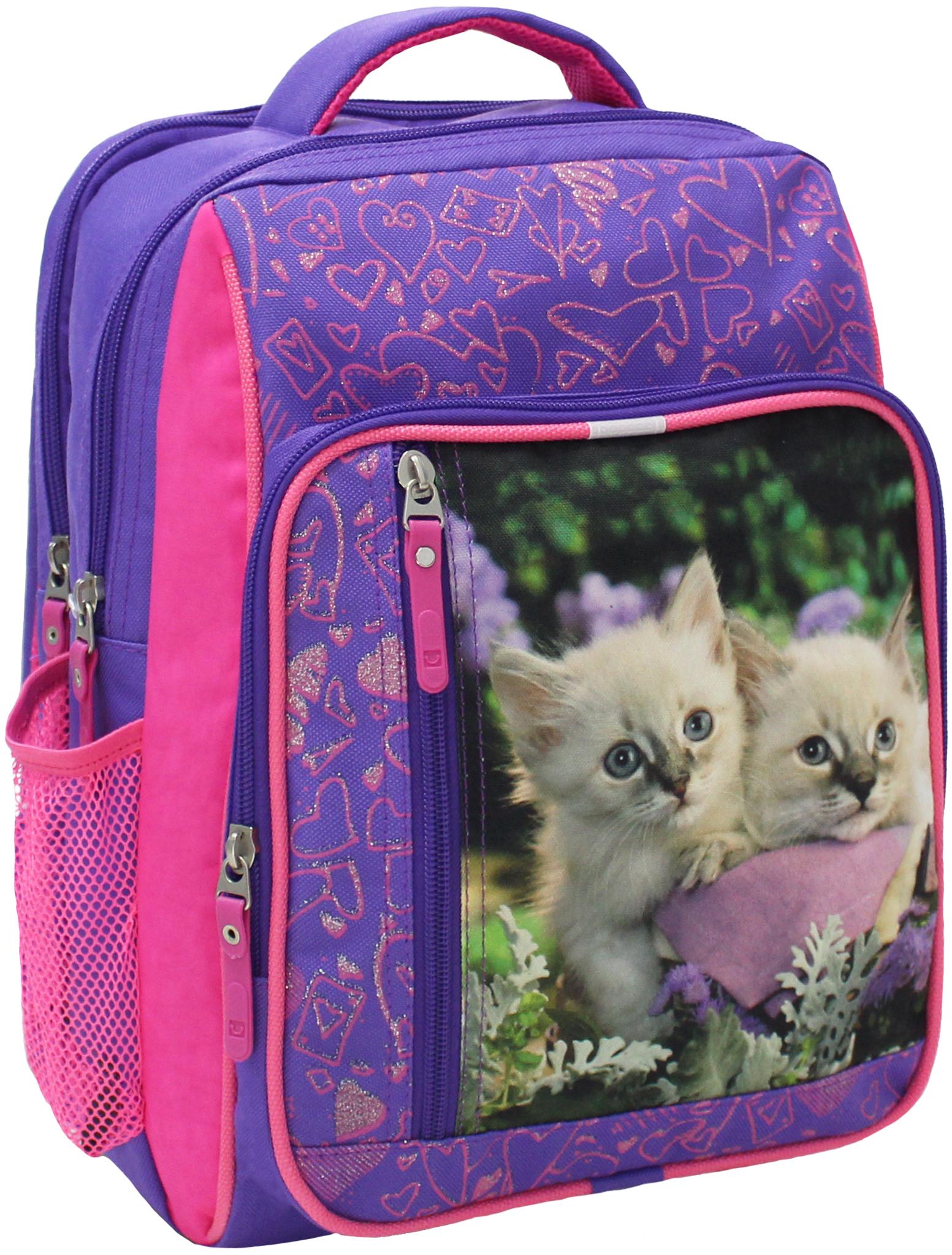 Школьные рюкзаки Рюкзак Bagland Школьник 8 л. 170 фіолетовий 5 д (00112662) IMG_5281.JPG