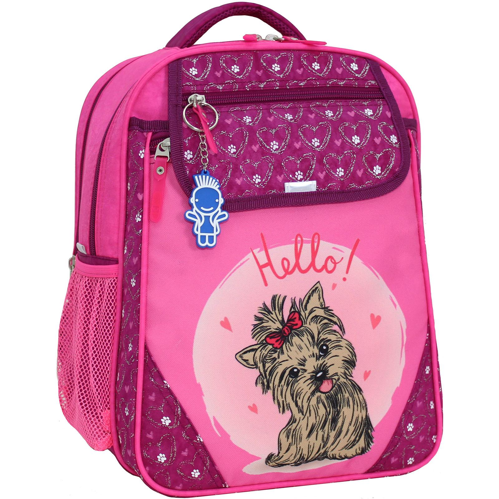 Школьные рюкзаки Рюкзак школьный Bagland Отличник 20 л. 143 малиновый 167к (0058070) IMG_9256_суб.167К_.JPG