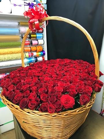 301 роза в корзине #171634