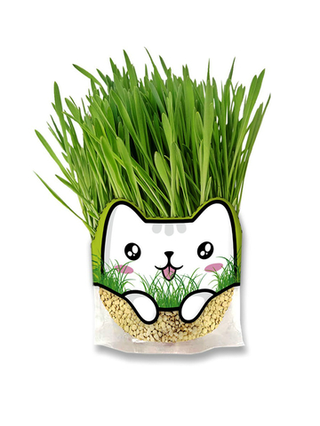 Трава для кошек, 500 мл Цеосан