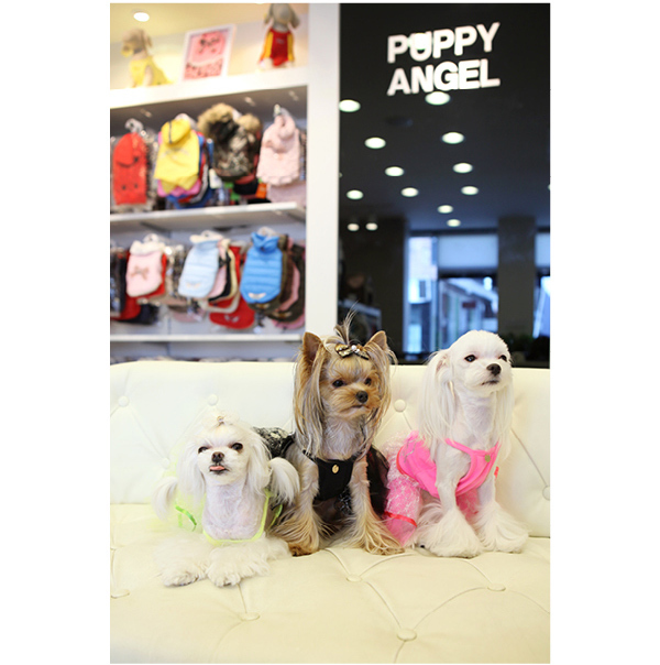 121 PA - Платья для собак