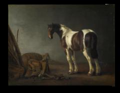 """Репродукция """" Абрахам ван Калр - Лошадь с седлом  """""""