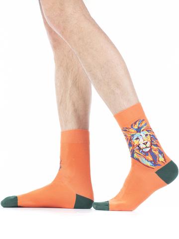 Мужские носки W94.N03.490 Wola