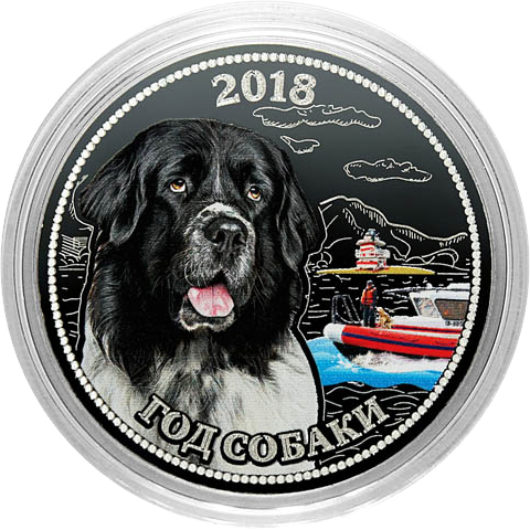 Гравированная монета. Год собаки - ньюфаундленд (спасатель на воде). 25 рублей 2018.