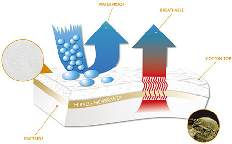 Miracle Membrane