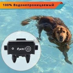 Электроошейник для собак Petrainer 619a
