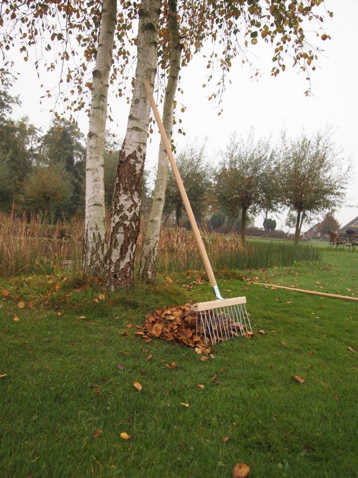 Двухрядные садовые и газонные веерные грабли DeWit