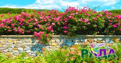 """Фотосетка """"Рада"""" для декора забора """"Каменный забор с цветами"""" 158х250 см."""