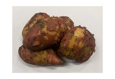 Картофель Молодой Красный, 1 кг