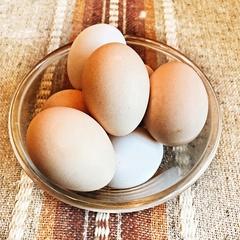 Яйца домашние 1 десяток