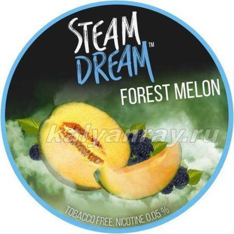 Steam Dream - Дыня с Ягодами