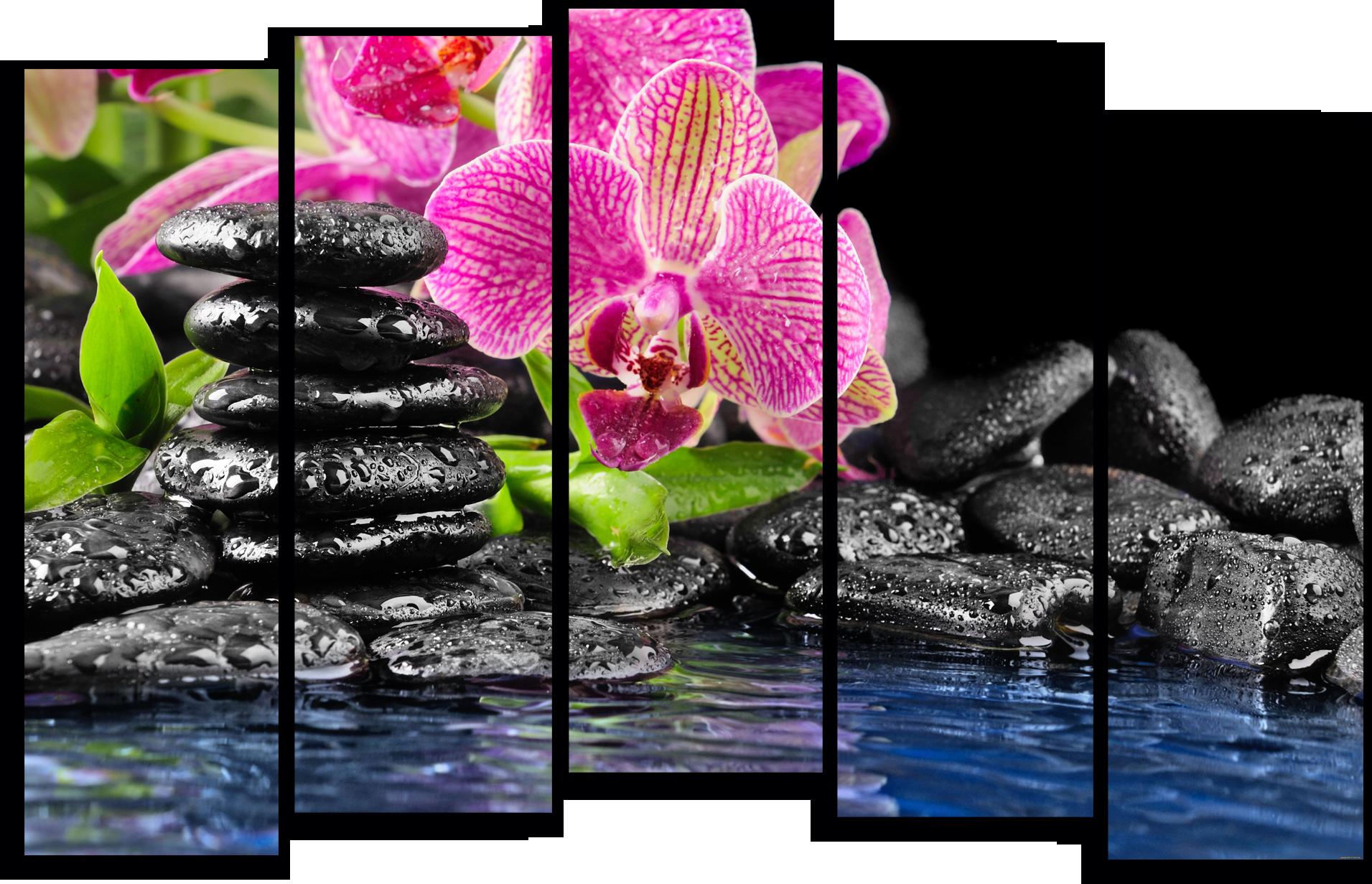 """Цветы Модульная картина """"Цветы в воде"""" М773.png"""