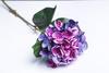 Пурпурная гортензия.