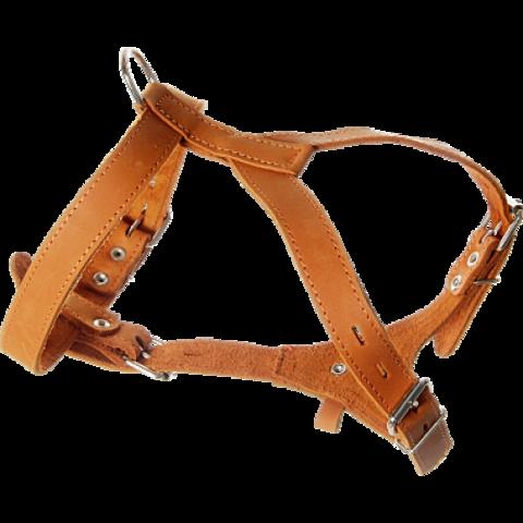 Зооник Шлейка кожаная для собак средняя 25мм