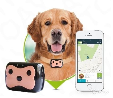 GPS-трекер ошейник для животных Pet GPS Tracker