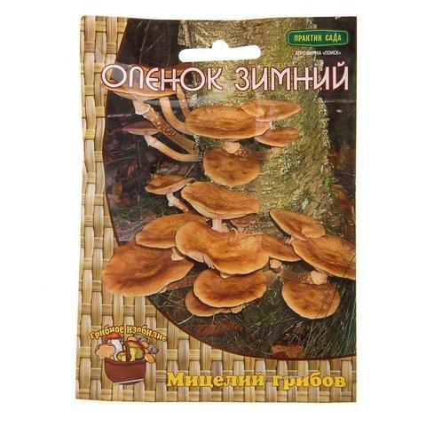 Мицелий грибов Опёнок зимний на деревянных палочках 12 шт