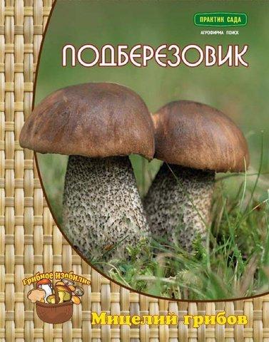 Мицелий грибов Подберёзовик на компосте 60 мл