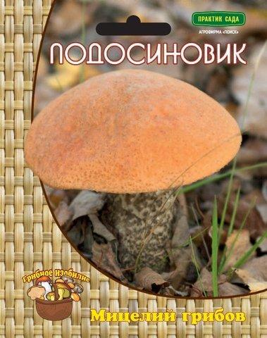 Мицелий грибов Подосиновик на компосте 60 мл