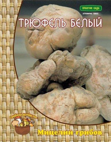 Мицелий грибов Трюфель белый или итальянский на компосте 60 мл