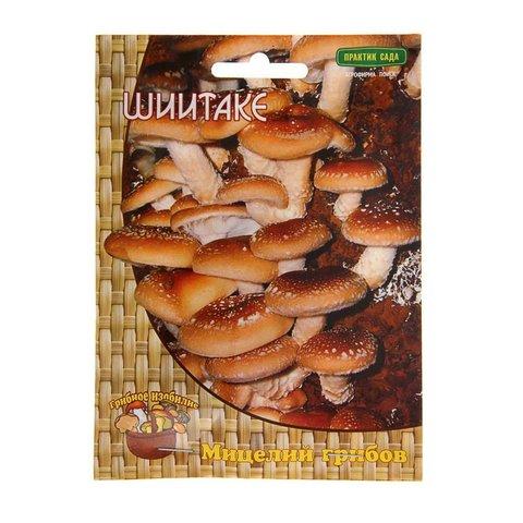 Мицелий грибов Шиитаке на деревянных палочках 12 шт