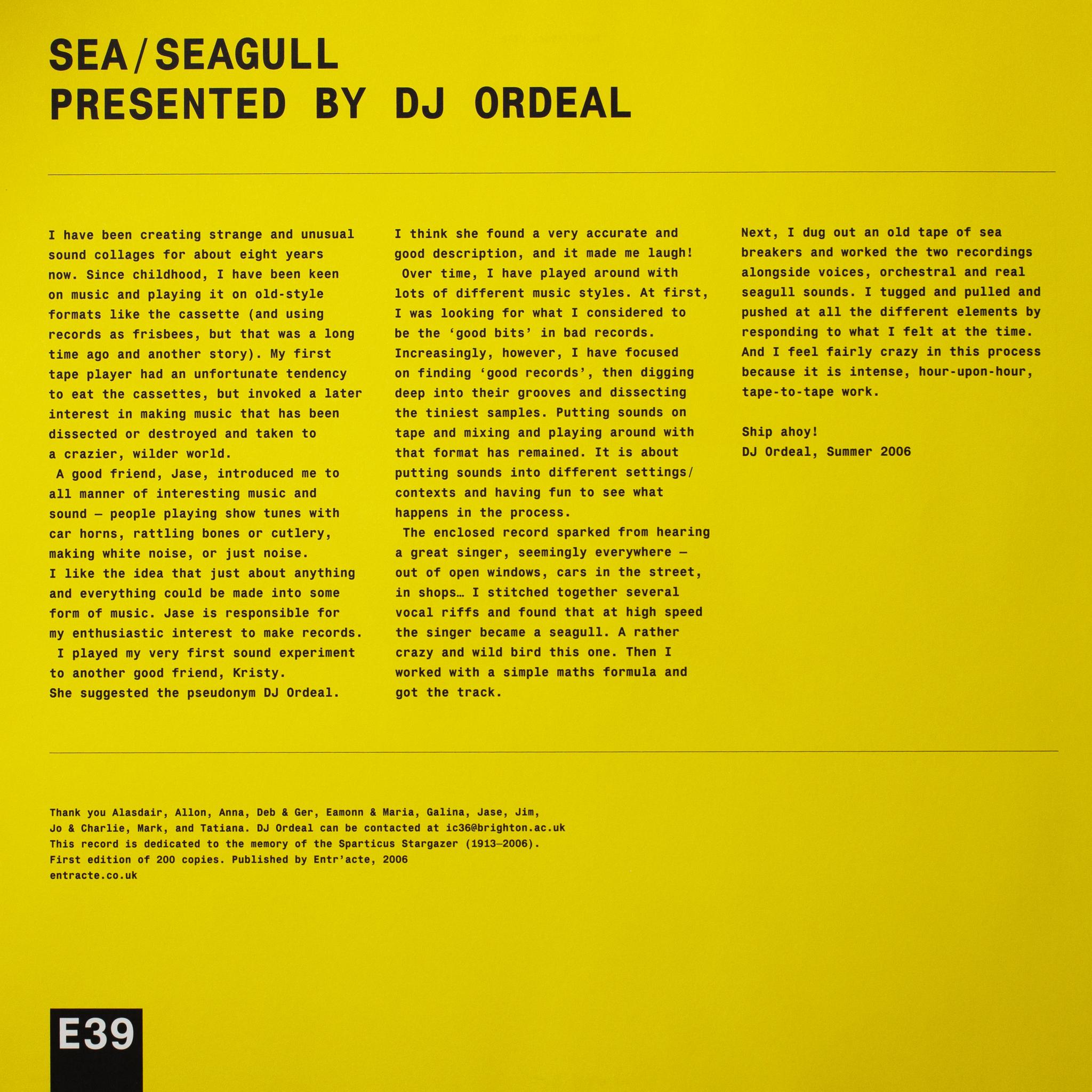 Sea / Seagull