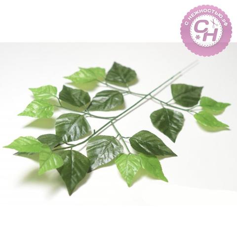 Листья березы на ветке, 1 шт.