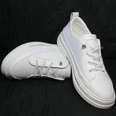 Модные женские кроссовки туфли кожаные женские El Passo sy9002-2 Sport White.