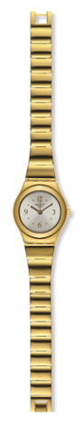 Купить Наручные часы Swatch YSG134G по доступной цене