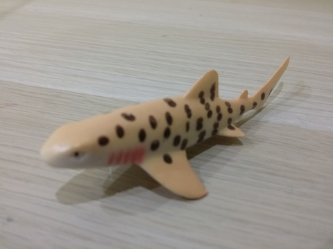 Пятнистая акула