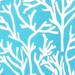 Скай корал