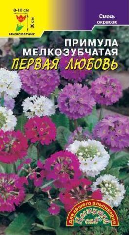 Семена Примула Первая любовь СМЕСЬ